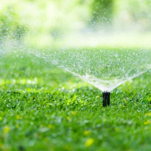 A sprinkler waters the grass.