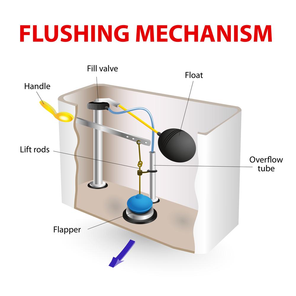 Toilet tank anatomy   Electric Drain